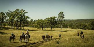 Farmstay Australie